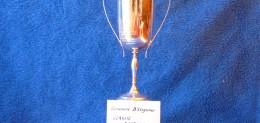 Concours D'Elegance Classic Acceptance